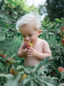 Appel en spijsvertering